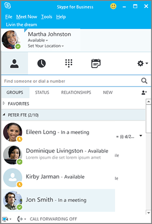 Skype for Business Contacts list