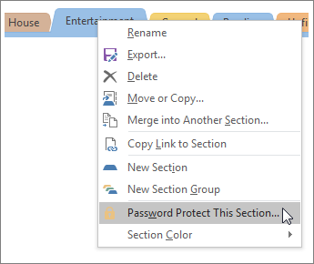 Screenshot of how to password protect a section in OneNote 2016.