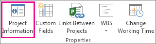 Project Information on the Project tab
