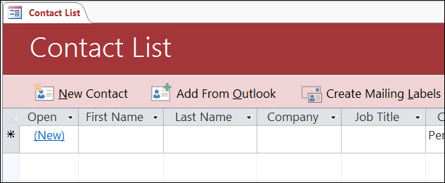 Contact list form in the Access Contacts database template