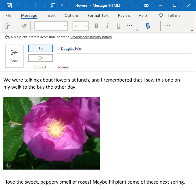 Outlook Accessibility MailTip