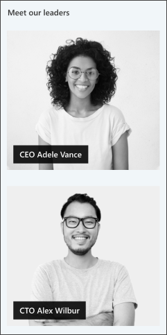 Image of the people profiles web part on the leadership site template