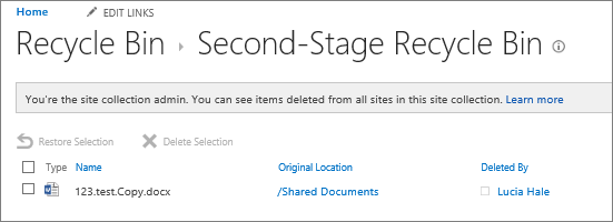 The admin's second stage recycle bin to undelete already deleted documents