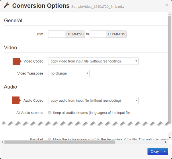 The Conversion Options dialog box has options for the Video Code and the Audio Codec