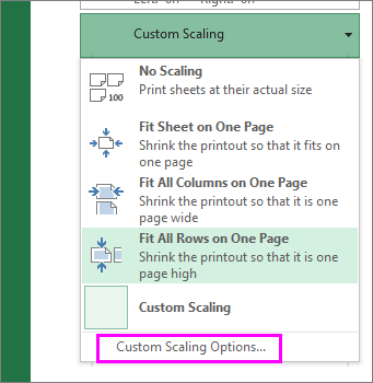 custom Scaling print option