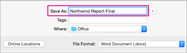 In the Save As box, enter or modify the file name for the current document.