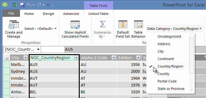 Data Categories in Power Pivot