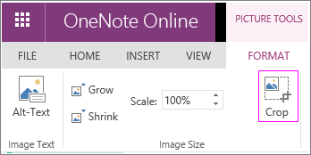 Screenshot of the Crop Picture option in OneNote Online.