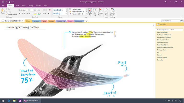 Screenshot of OneNote 2016