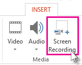 Insert > Screen Recording