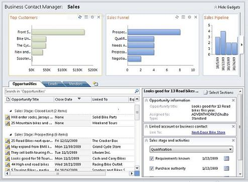 Business Contact Manager Sales workspace without Ribbon and Naviation Pane