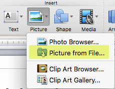 On Home tab of the ribbon, under Insert, click Picture > Picture from File.