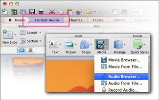 Open audio browser