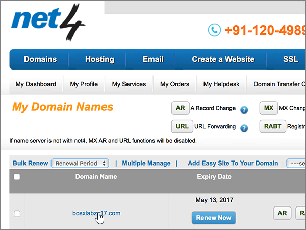 Choose the name of the domain