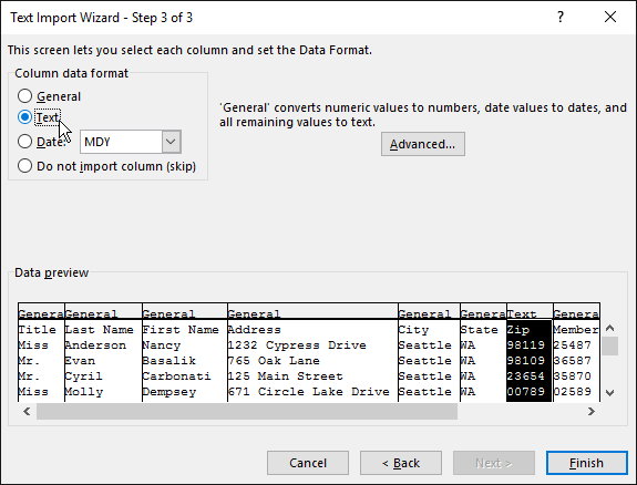 The Text option for Column data format is highlighted in the Text Import Wizard.