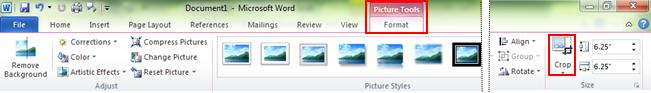 Ribbon Picture Tools Format Tab crop command