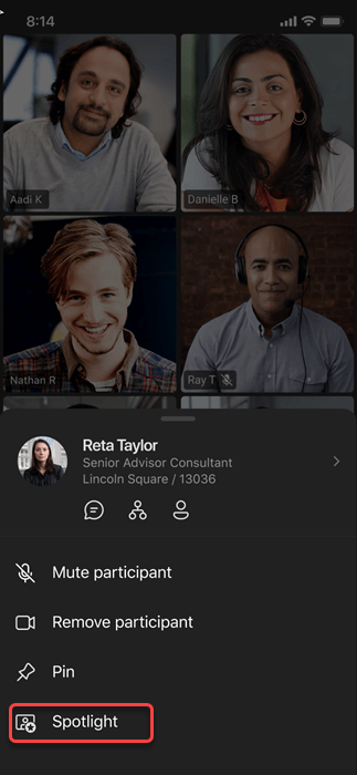 Option to spotlight the video