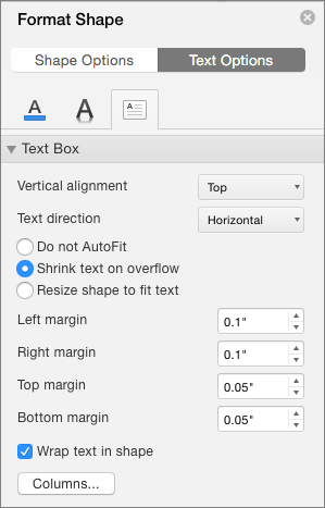 Text Box options in the Format Shape pane
