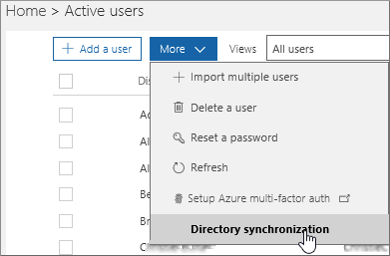 In the More menu, choose Directory synchronization