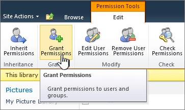 Grant Permissions button