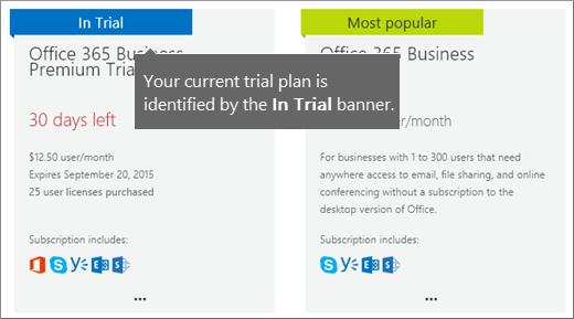 In Trial banner for your trial subscription.