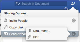 Select the format for the document you will send, Word document or PDF.