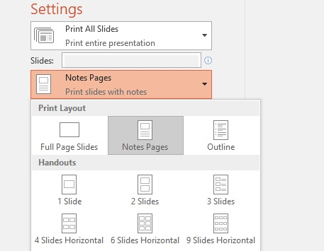 screenshot of print notes option
