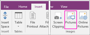 Screenshot of the Insert Pictures button in OneNote 2016.