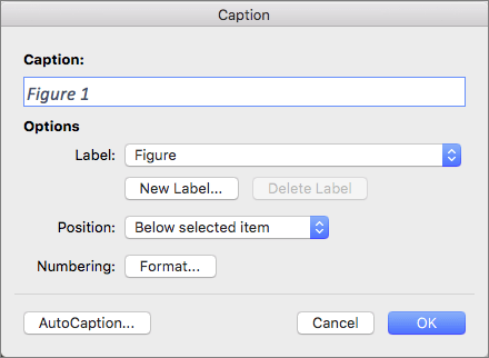 Create captions for figures, tables or other objects with the Caption dialog