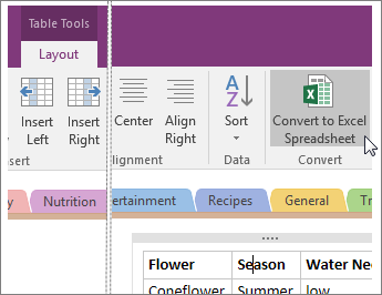 Screenshot of the Convert to Excel Spreadsheet button in OneNote 2016.