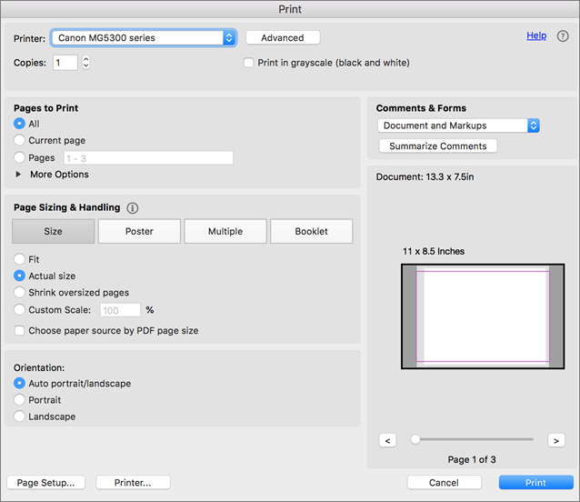 Choose print settings in the Print dialog box