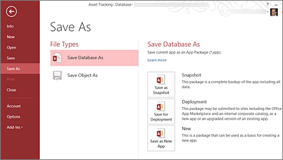 Save As Database options on the Save As screen