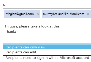 Choosing view-only and sign-in required options in invitation email