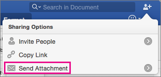 To send your document as an attachment to an e-mail message, click Send Attachment.