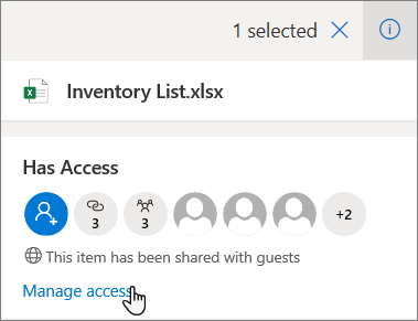 The Details pane in OneDrive for Business showing the Manage Access link