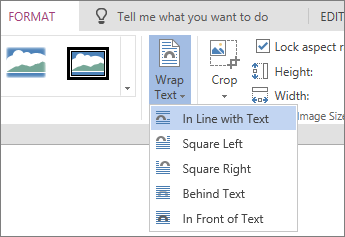 Picture formatting - wrap text dropdown