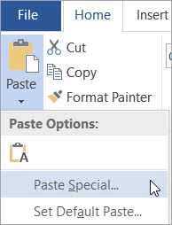 Choosing Paste Special on the Paste menu