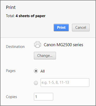 Chrome Print panel options