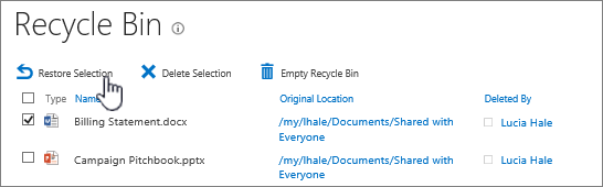 Restore or delete items from recycle bin.