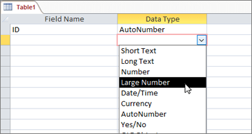 Data type list with Large Number highlighted