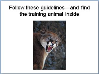 Follow these guidelines and find the training animal inside