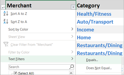 Select the down arrow next to Merchant > Text Filters > Equals.