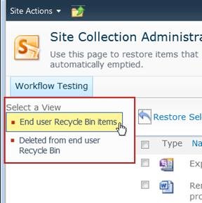 End user Recycle Bin items selected