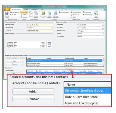 Business Project record showing related accounts and business contacts