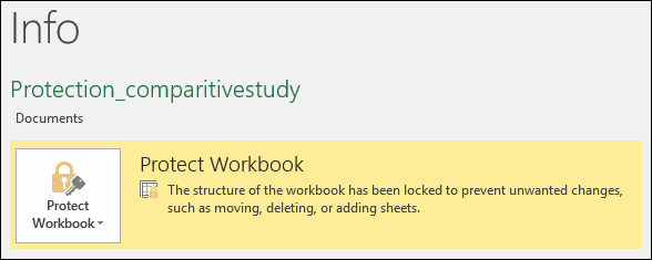 Protect Workbook status highlighted in the Info tab