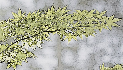 Leaves with Photocopy effect