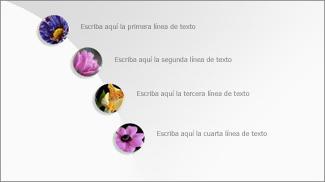 Botones de imagen animada
