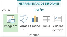Pestaña Herramientas de informe | Diseño