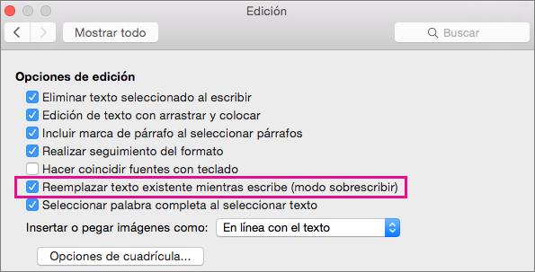 Reemplazar texto existente mientras escribe (modo sobrescribir) está resaltado en el cuadro de diálogo Editar preferencias de Word.
