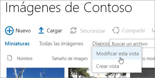 Barra de vistas de biblioteca de imágenes con modificar vista seleccionada